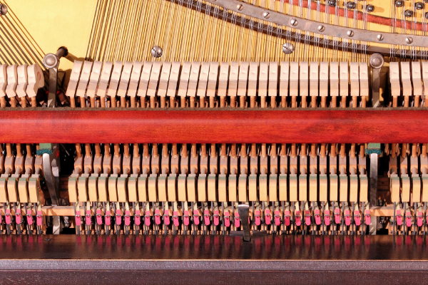 Inside a Piano , you can see hammers and strings